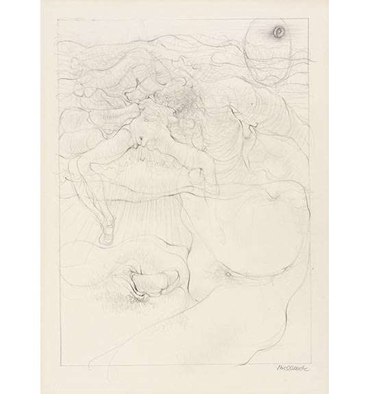 A drawing consisting of delicate wavy lines depicting a nude female figure, and male and female genitalia engaging in sexual intercourse.