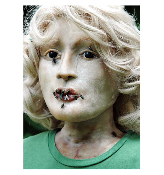 Color image of a female mannequin with blonde hair and a green shirt. Flies are placed or sitting on the mannequins lips, eyelids, and eyes.