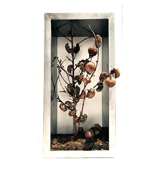 Image of framed object with dirt and sticks looking like a tree with fruits and bugs.