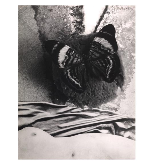 A photomontage of a woman's nude torso, partially appearing horizontally from the bottom. What appears to be fabric is placed about the tros, with a butterfly in the center of the work.