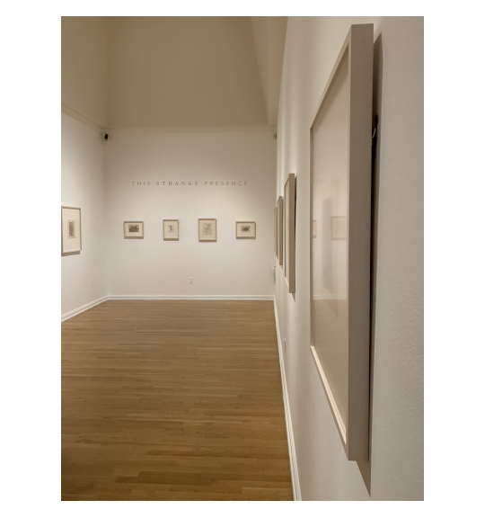 A photograph of an exhibition room, showing a light wood floor and white walls. About eight works of similar size hang on the walls.