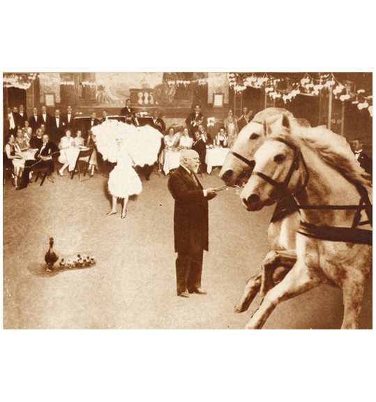 Two horses appear on the right side as if galloping, while a man in a dark suit stands to their left. People dressed in what appears to be formal wear sit around tables in the background, and seem to be looking at a dancing woman wearing a white costume.