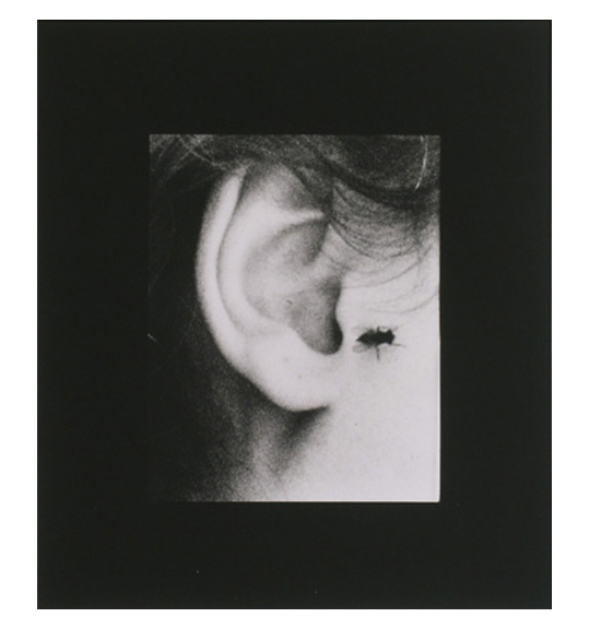 A close-up of a person's ear, showing a fly sitting next to the lobe.