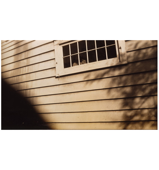 A photograph of the side of a house. Horizontal slats can be seen on the house, as well as the bottom of a window with two rows of panes. The shadow of what appears to be a tree or plant appears on the right side.