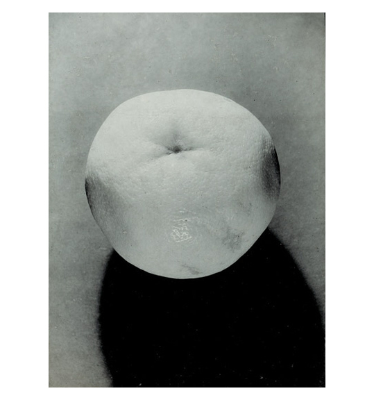 A black and white image of a grapefruit, which casts a shadow into the bottom right corner