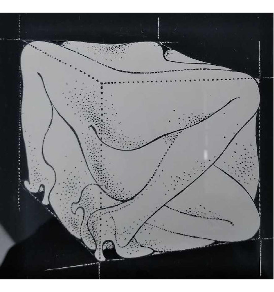 A work on a black background showing a cube shape. The shape is created from what appears to be women's legs wearing high heels.